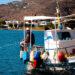 Fisker på Andros i Kykladerne